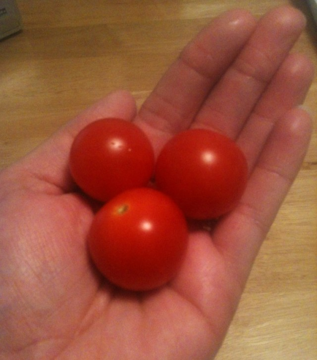 Tomatoes from our little garden